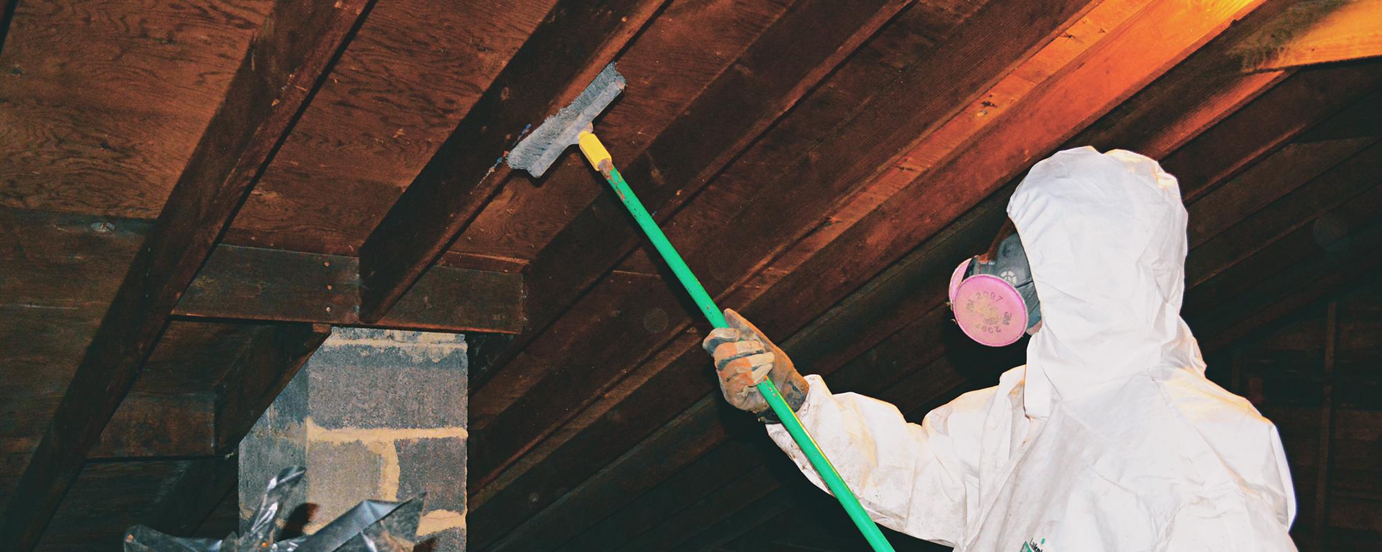 prevent-attic-mold-eastern-pa